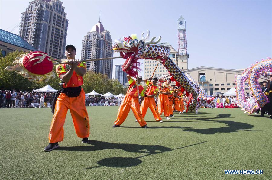 2019 Dragon Lion Dance Festival held in Ontario, Canada