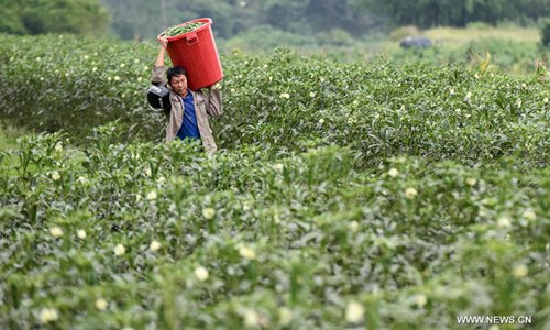 China's policy financial institutions required to play big role in poverty alleviation