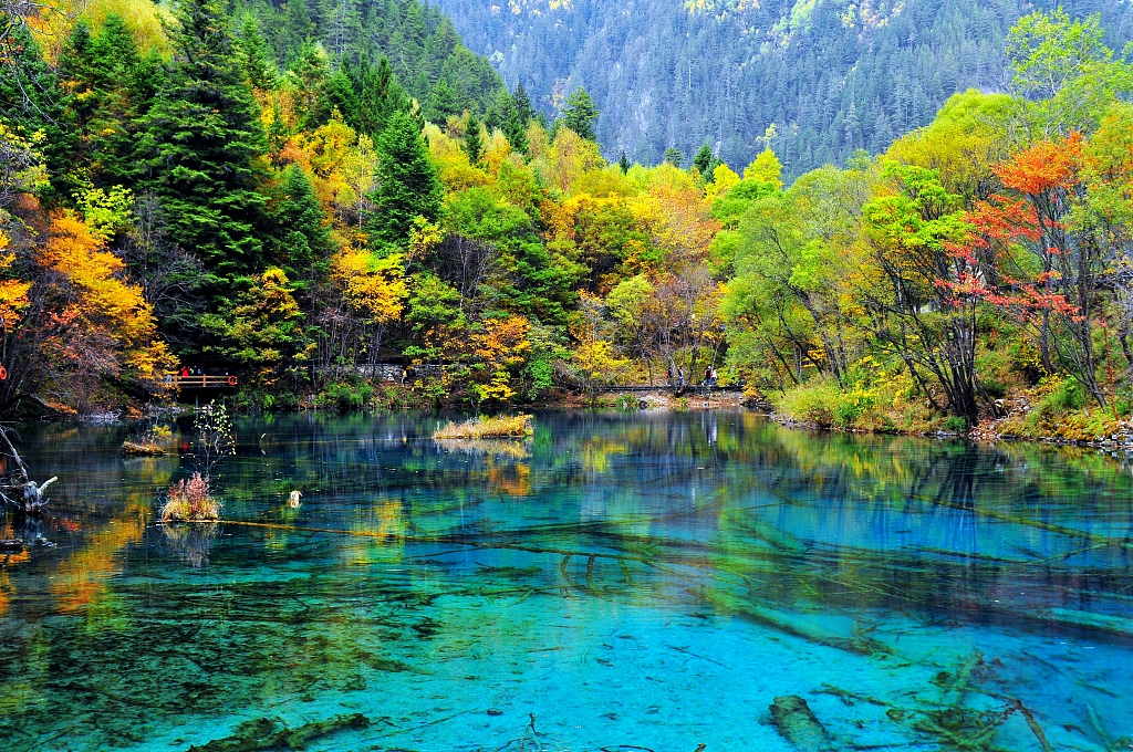 Famed Chinese scenic spot Jiuzhaigou to reopen after quake