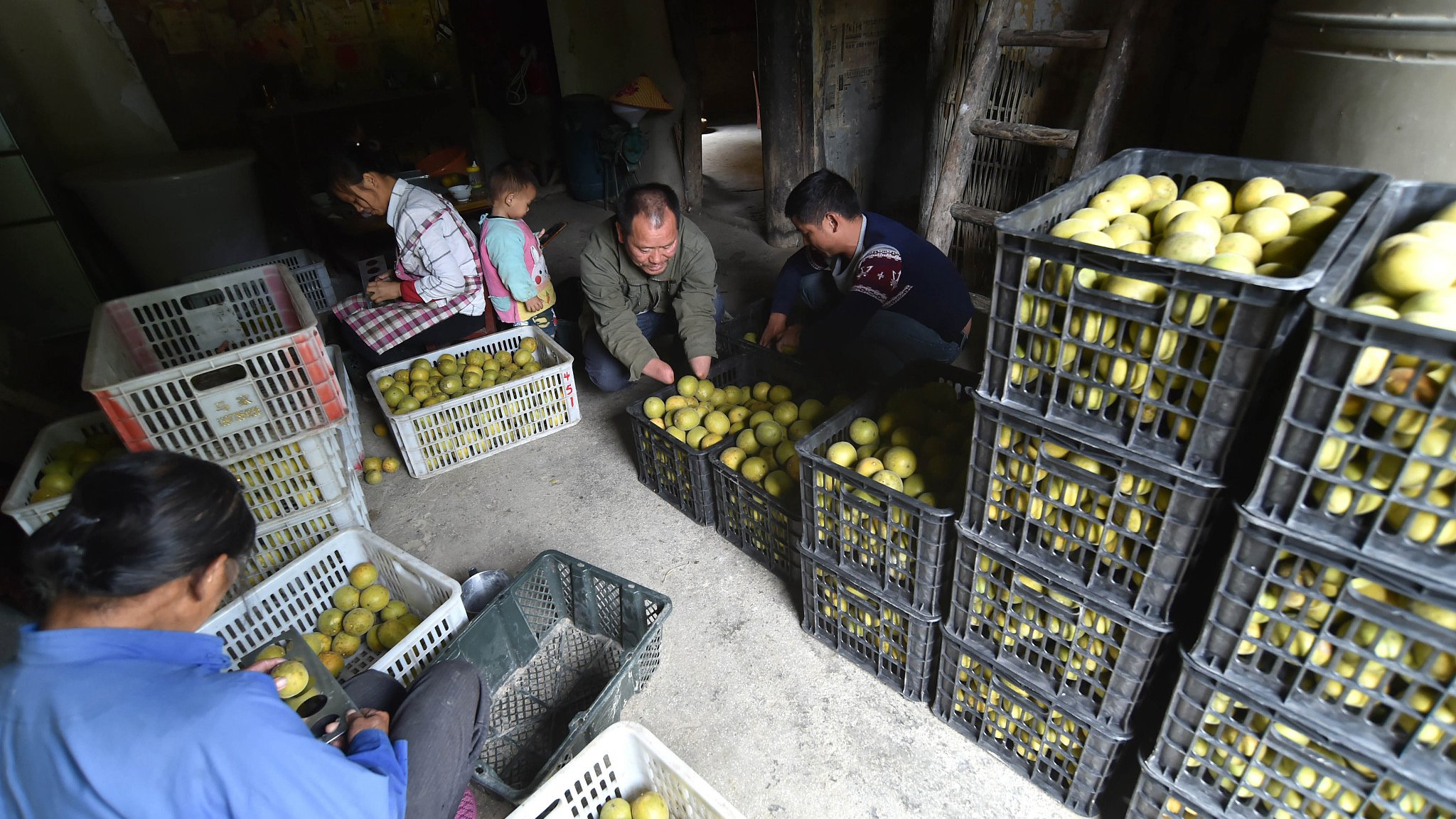 China makes important contributions to global poverty reduction: report