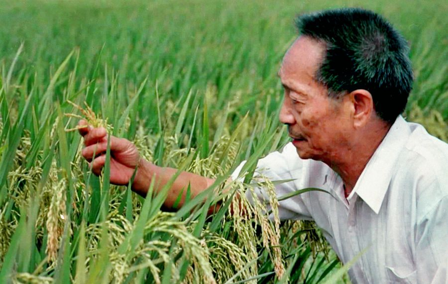World benefits from 70 years of socialist practices in China