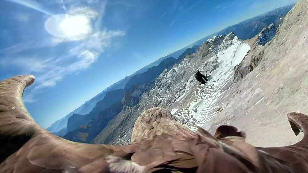Soaring eagle films crumbling Alpine glaciers as Earth warms