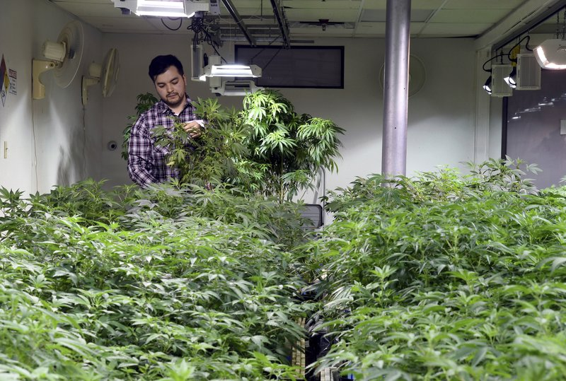 Colorado banks quietly offer services to marijuana industry
