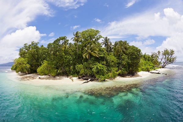 Xi says China, Solomon Islands forging diplomatic relations conforms to trend of times