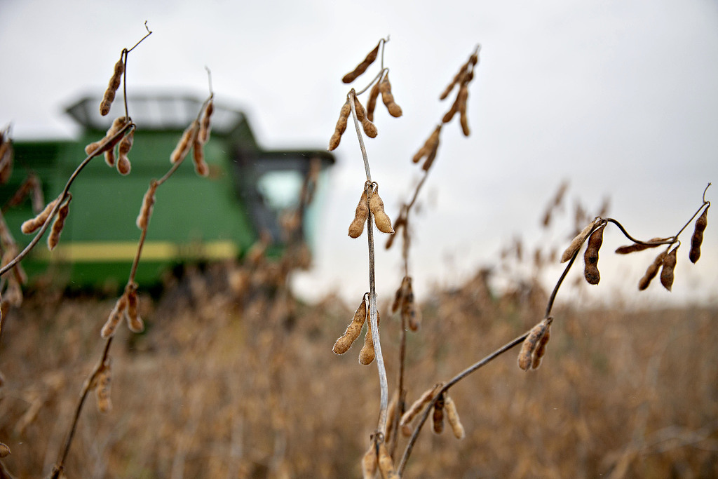 FM: Chinese companies purchase US agricultural products based on domestic needs