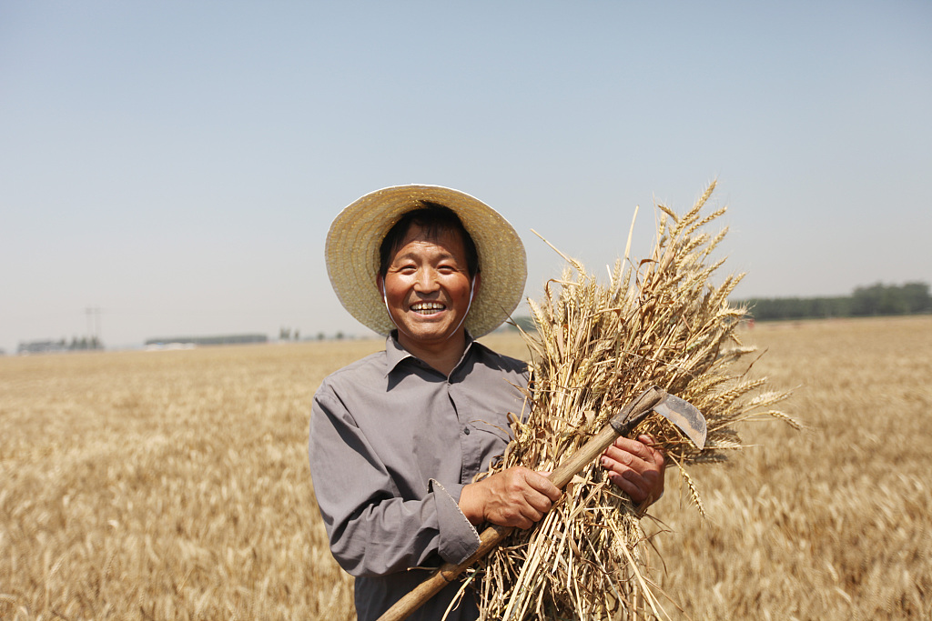 70 years of achievements in food security