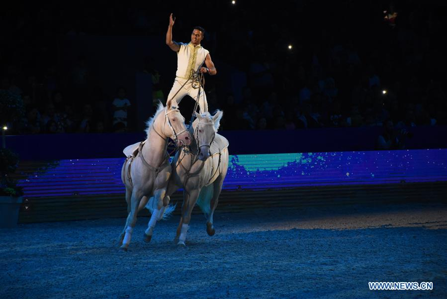 12th edition of Salon du Cheval, Morocco's flagship horse exhibition held in Morocco