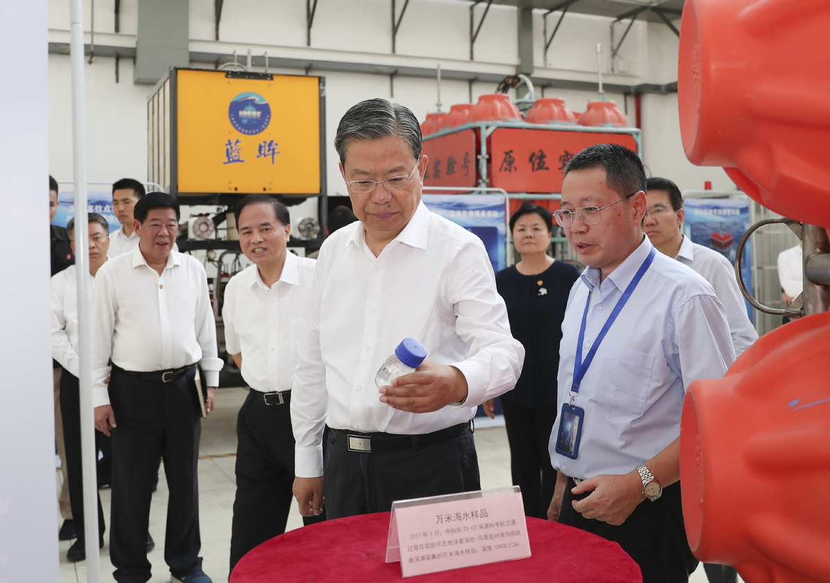 Senior CPC official urges effective supervision to implement key strategy
