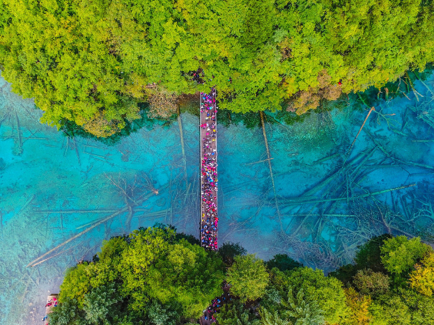 Famed Chinese scenic spot Jiuzhaigou welcomes more daily visitors