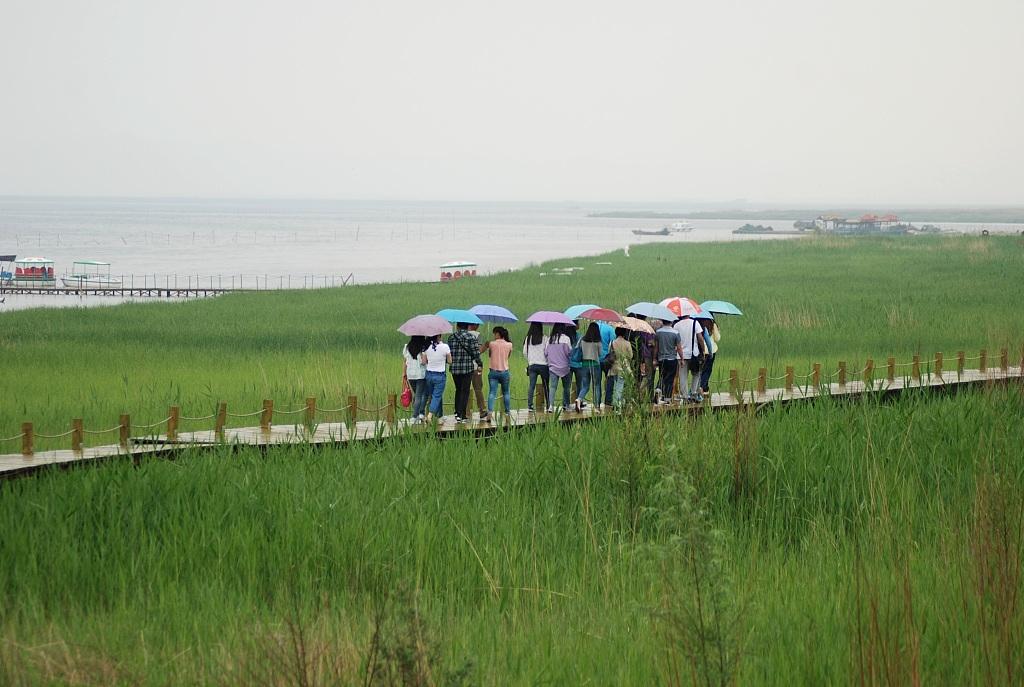 Deserts along Yellow River in Inner Mongolia see sharp decrease