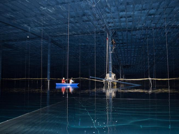 Chinese scientists' pursuit of cosmic rays opens windows on universe
