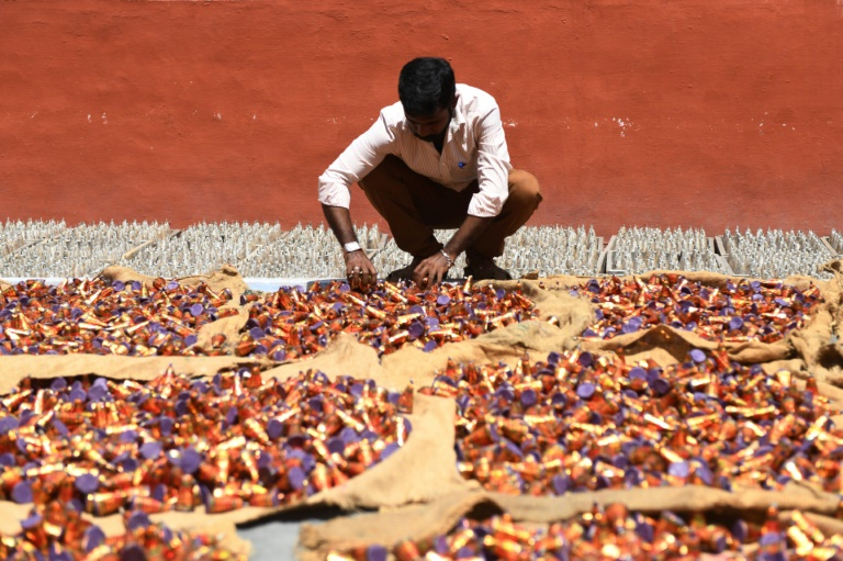 India's firecracker hub hit by anti-pollution drive