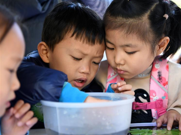 Nature observation festival held in Beijing