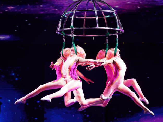 17th China Wuqiao Int'l Circus Festival held in Shijiazhuang