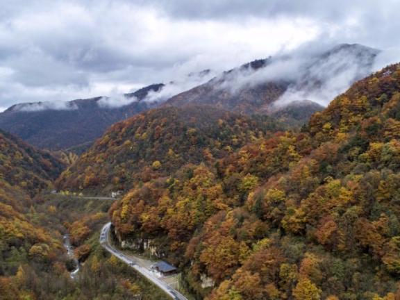 Late autumn scene in Shennongjia, Hubei province