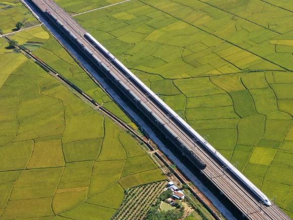 Bullet train runs through fields of Gula Township in S China's Guangxi