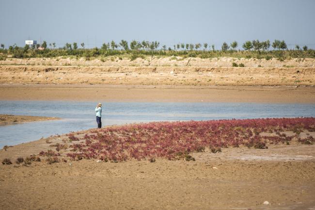China makes progress on water pollution treatment in Bohai Sea