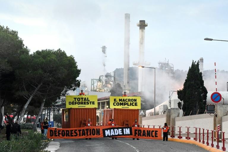 Greenpeace blocks Total biorefinery that uses palm oil