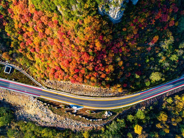 Taihang mountains attract visitors as leaves change colors