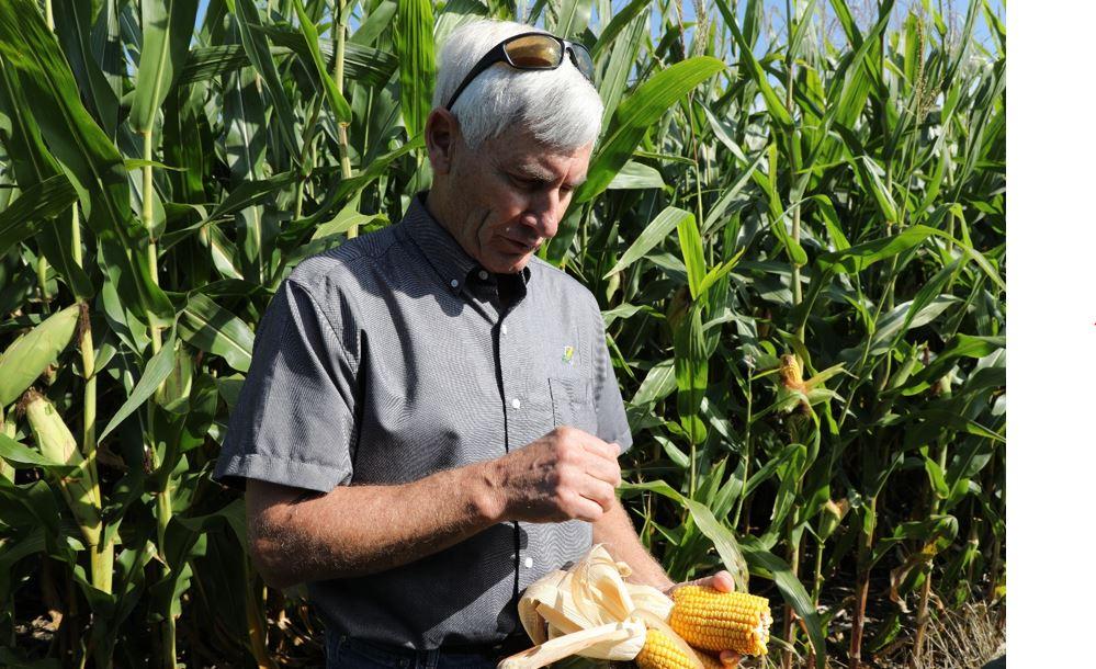 Illinois Farmer.jpg