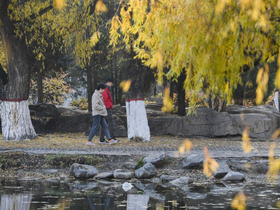 Autumn scenery in Hohhot, N China's Inner Mongolia