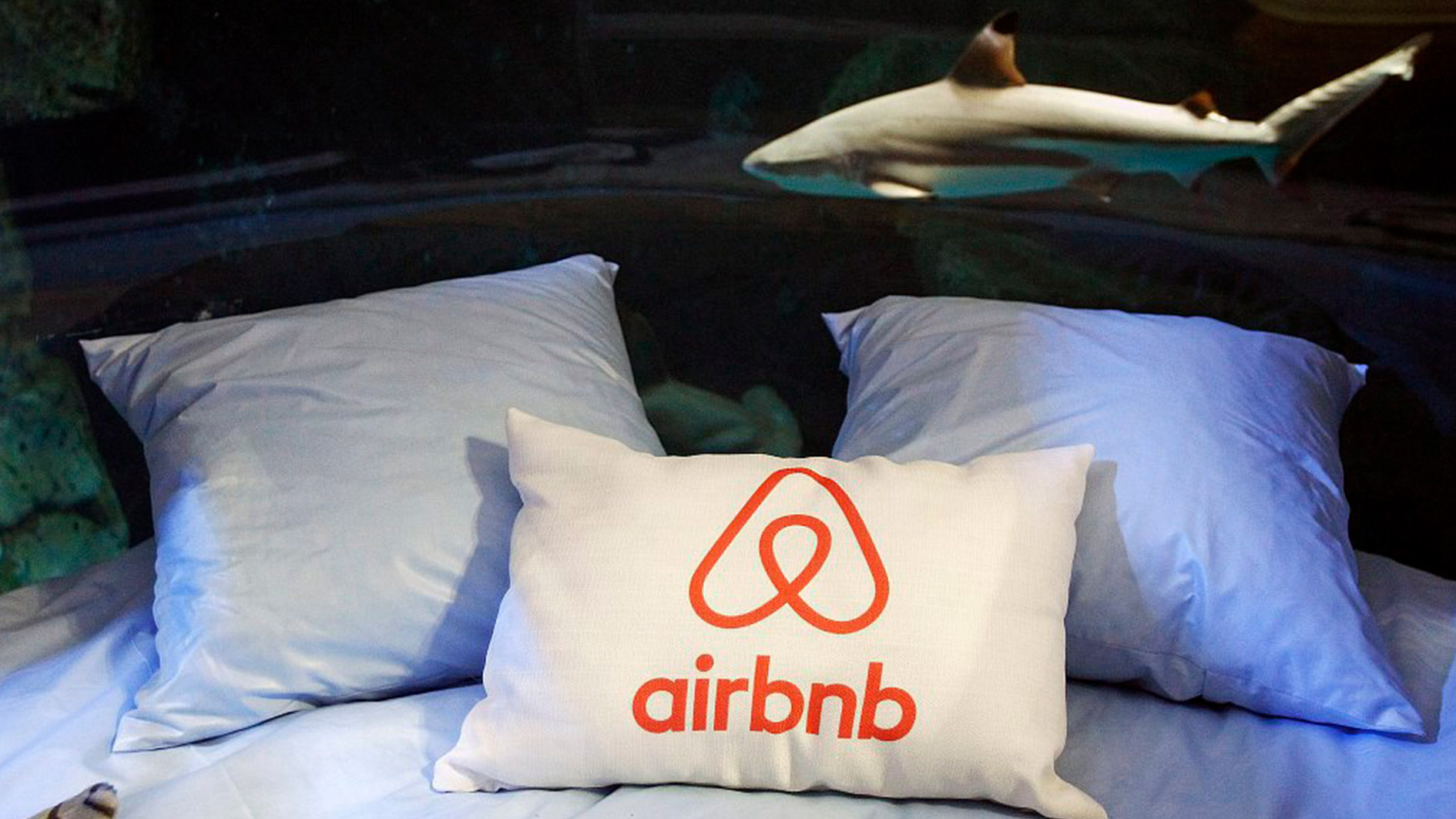 Airbnb to verify listings as deadly incident prompts safety move