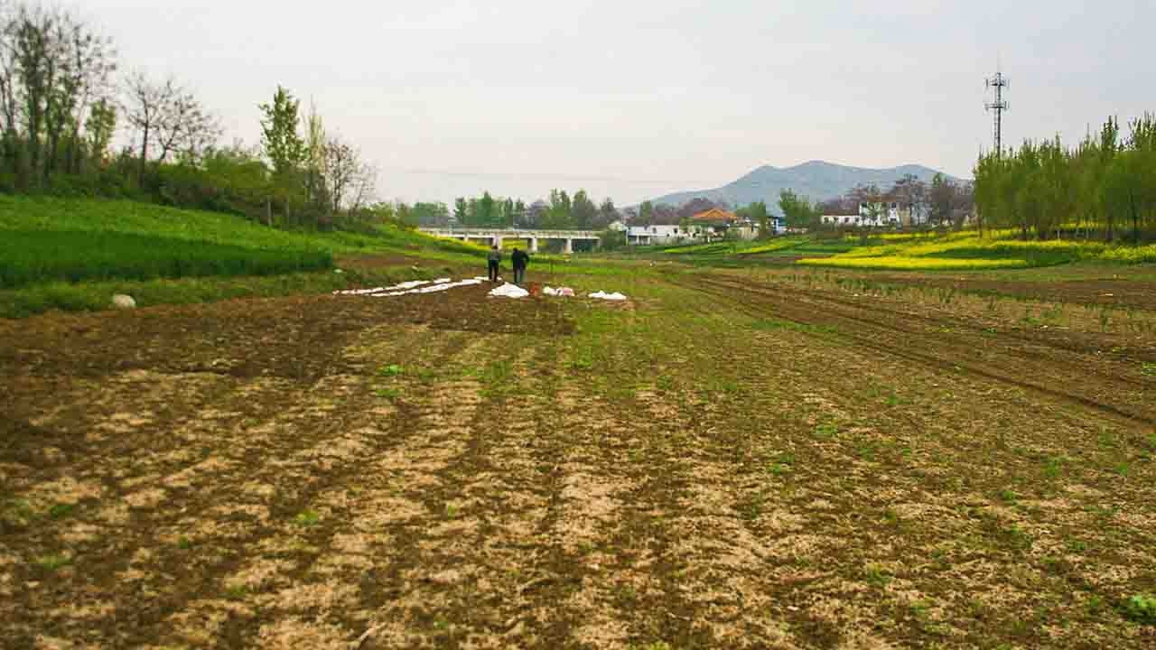 China allocates 418 mln yuan for drought relief