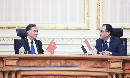 China's top political advisor visits Egypt to enhance bilateral cooperation, boost ties