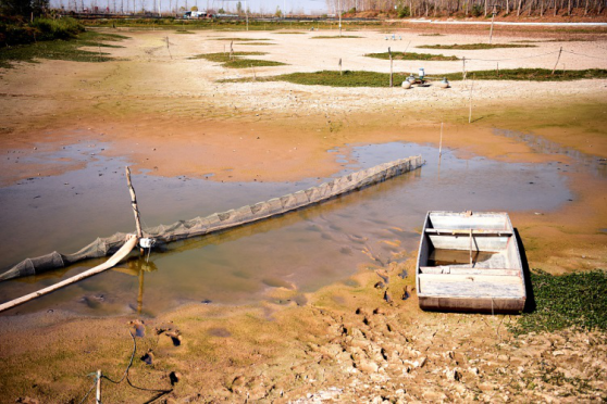 East China's Jiangsu continues to suffer from drought
