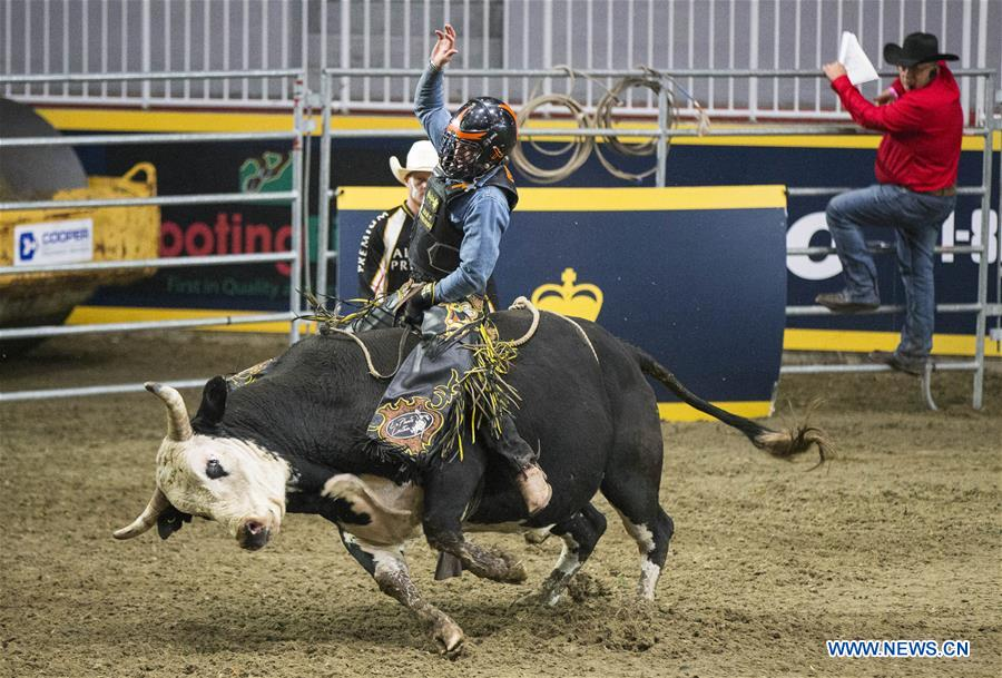 Bareback competition held at 2019 Royal Agricultural Winter Fair