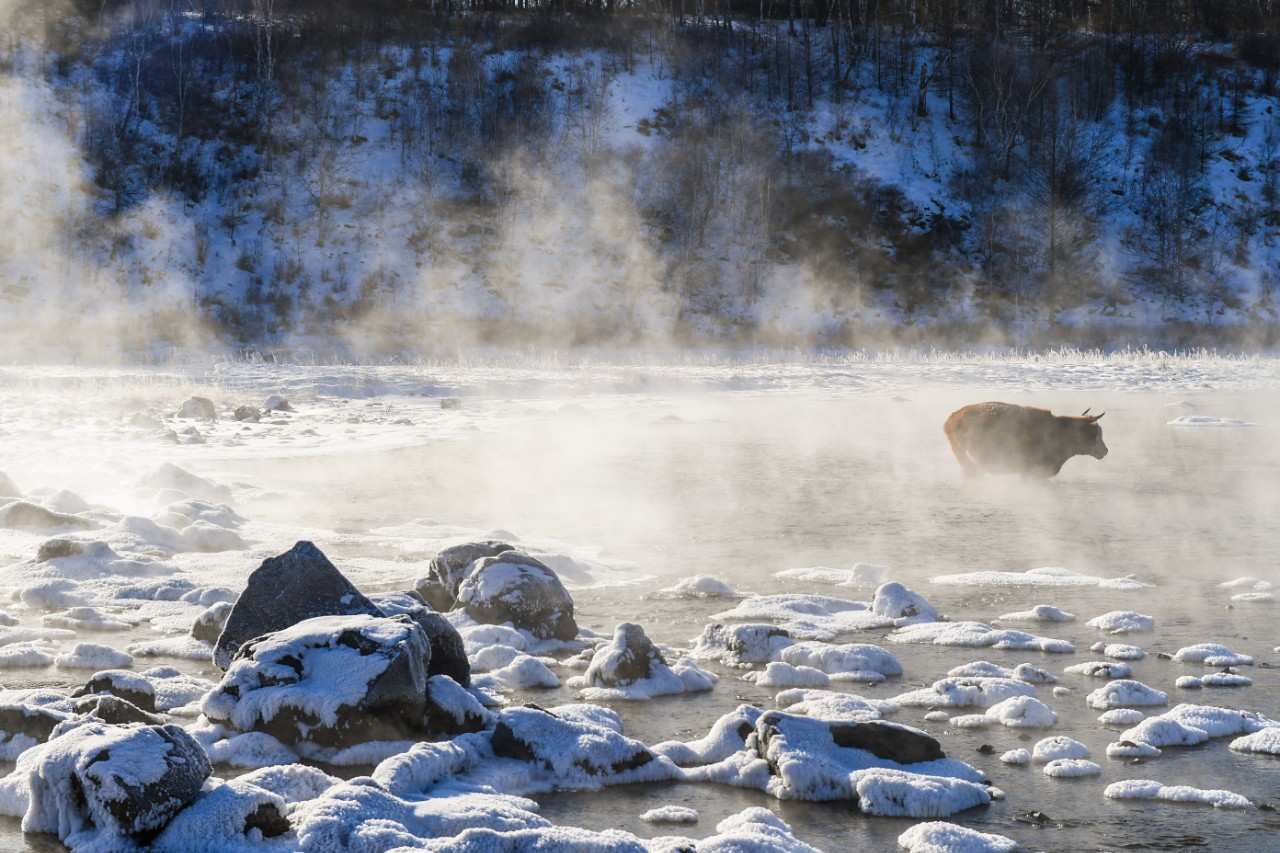 Picturesque Views of Winter in China