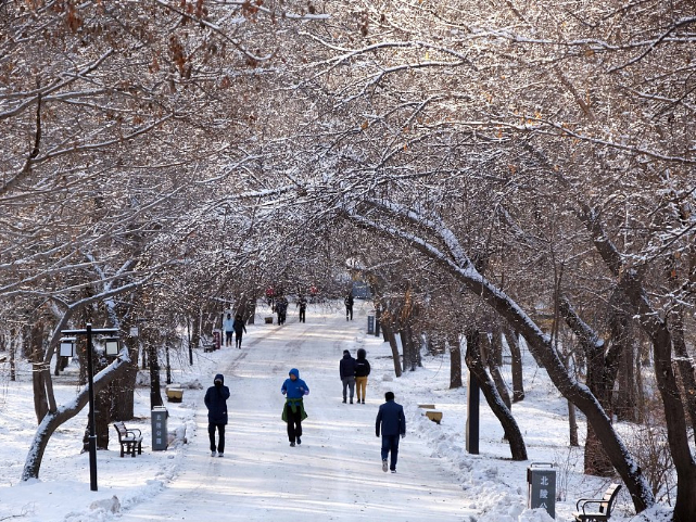 Snowfall to hit northern China in coming two days