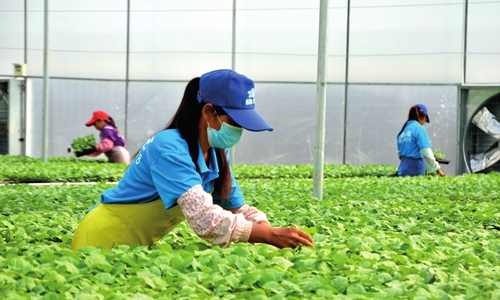 Southwest China's GDP growth rate leads the country