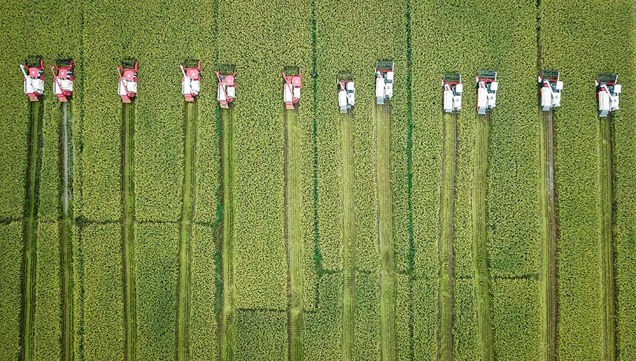 China will continue to back rural land deals