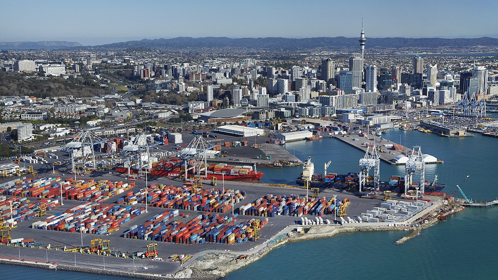 2020 means more business opportunities between New Zealand, China after FTA upgrade: business leaders