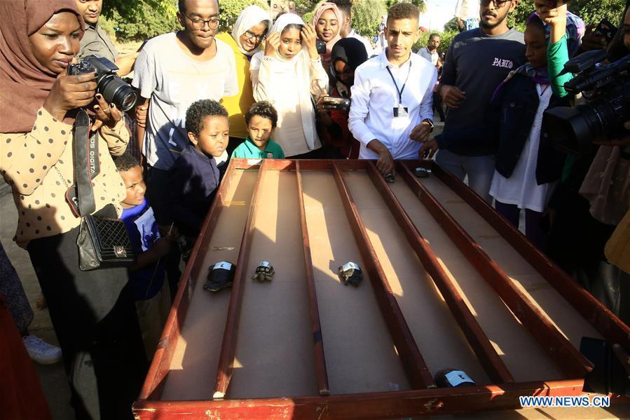 People watch turtle race in Khartoum, Sudan