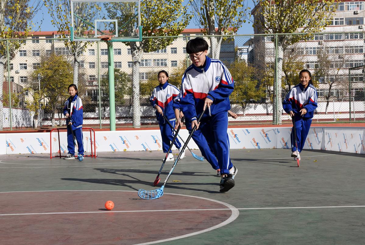 Hebei rolls out regulations on school incidents