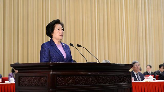China supports int'l Chinese language education programs: vice premier