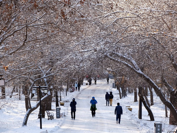 Beijing issues rare blizzard alert
