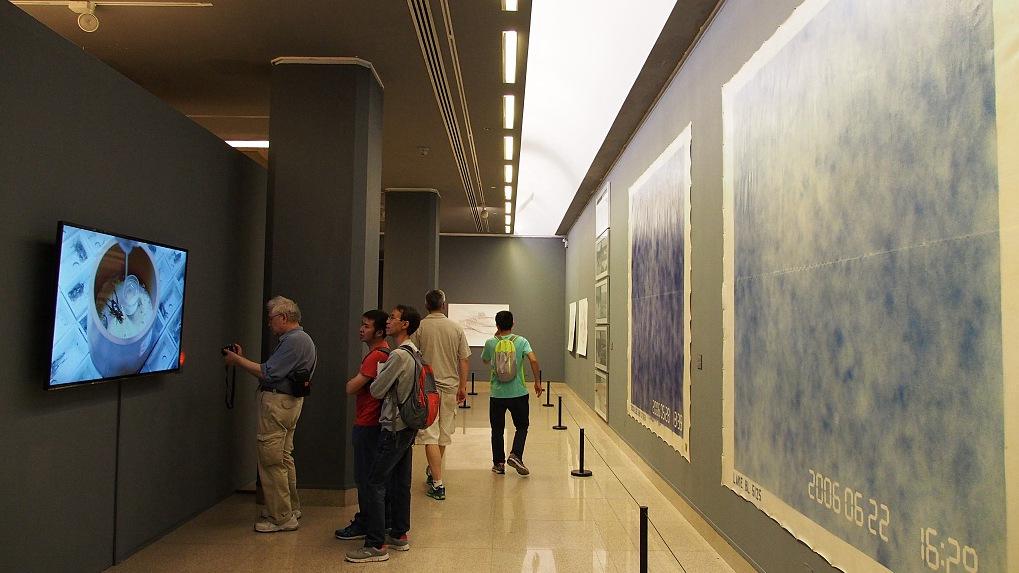 National exhibition of fine arts opens in Beijing