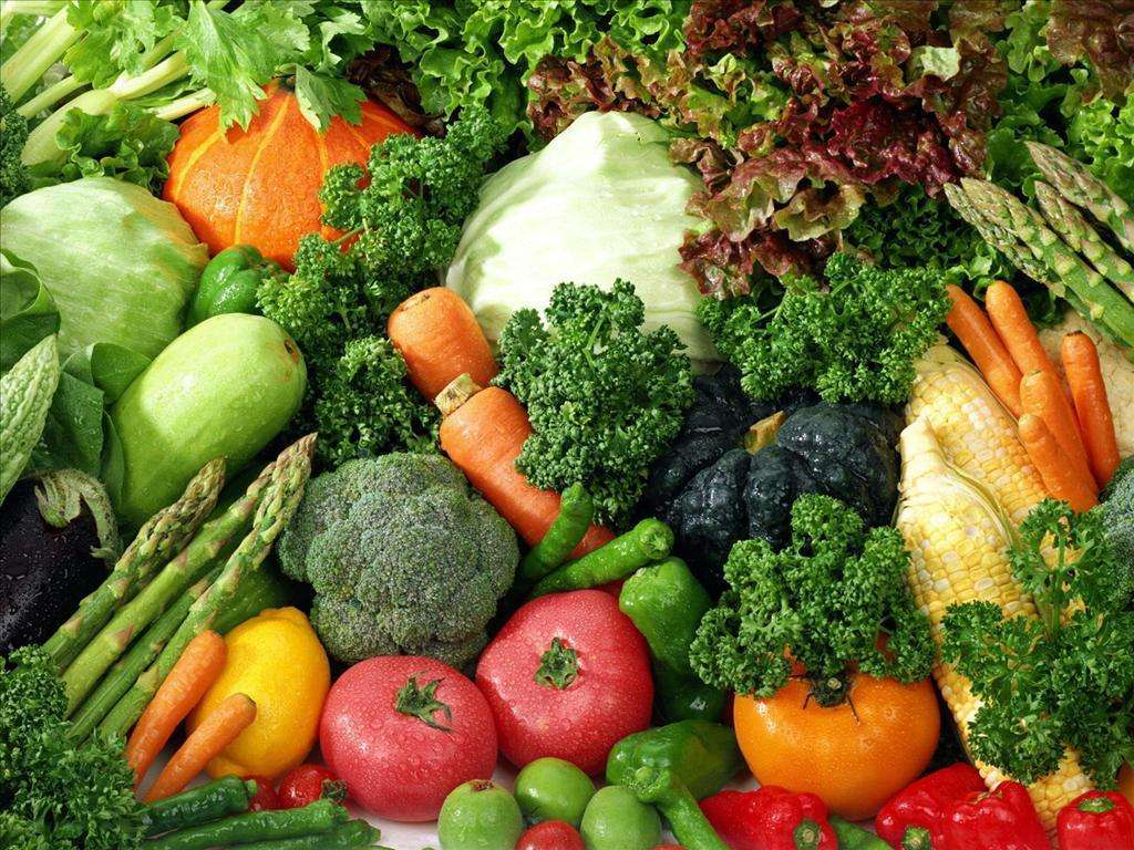 China green food expo draws global specialities