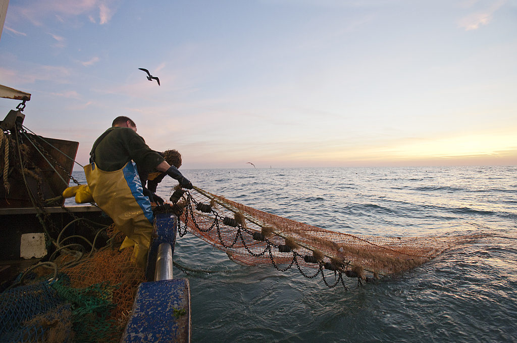Chinese lawmakers urge sustainable use of fishery resources