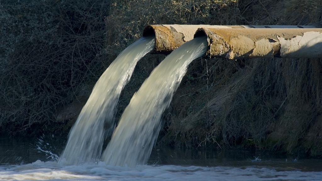 Japan could release Fukushima radioactive water into environment