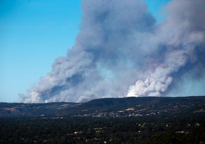 Sydney's drinking water supply under threat from bushfires