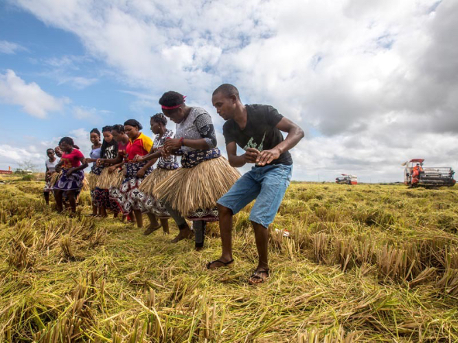 Cultivating a taste for farming