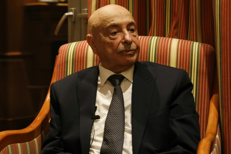 Libya parliament speaker urges rejection of UN-recognised govt