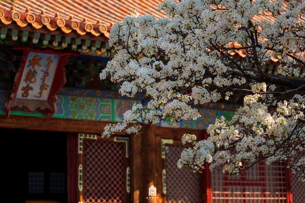 The fabulous Forbidden City all year round