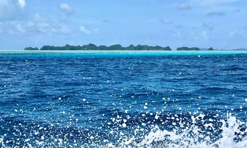 Palau bans 'reef-toxic' sunscreens