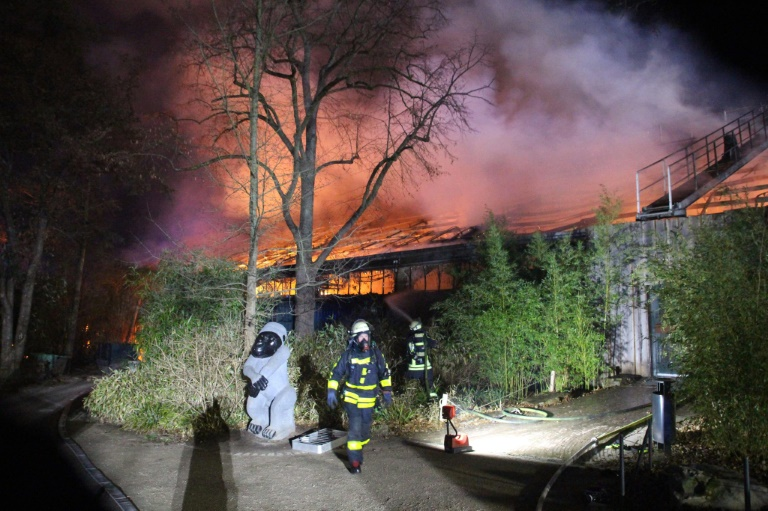 Fire accident in German zoo kills over 30 animals