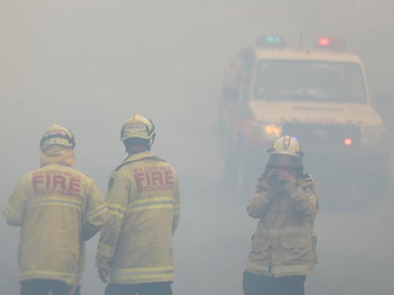 More New Zealand firefighters set to help fight Australian fires